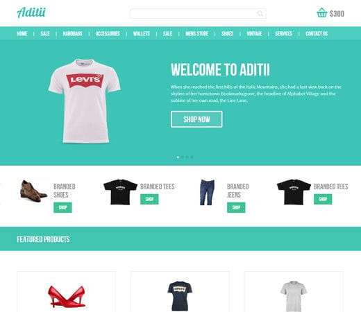 Aditii A Flat Ecommerce Responsive Web Template By Wlayouts