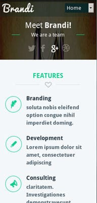 Mobile website Template Brandi Corporate Flat Responsive web template