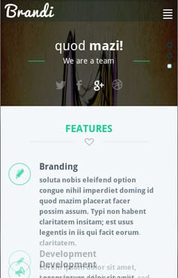 Free Iphone Smartphone web template Brandi Corporate Flat Responsive web template