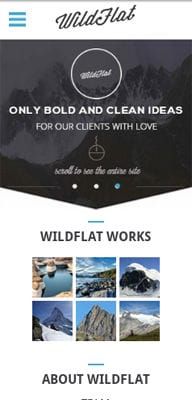 Mobile website Template WildFlat a Corporate Flat Responsive web template