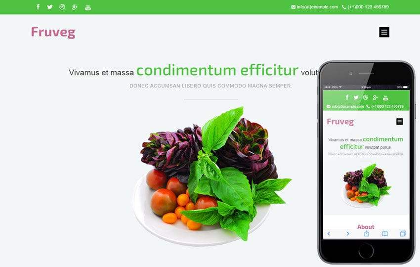 Fruveg a Agriculture Category Flat Bootstrap Responsive Web Template Mobile website template Free