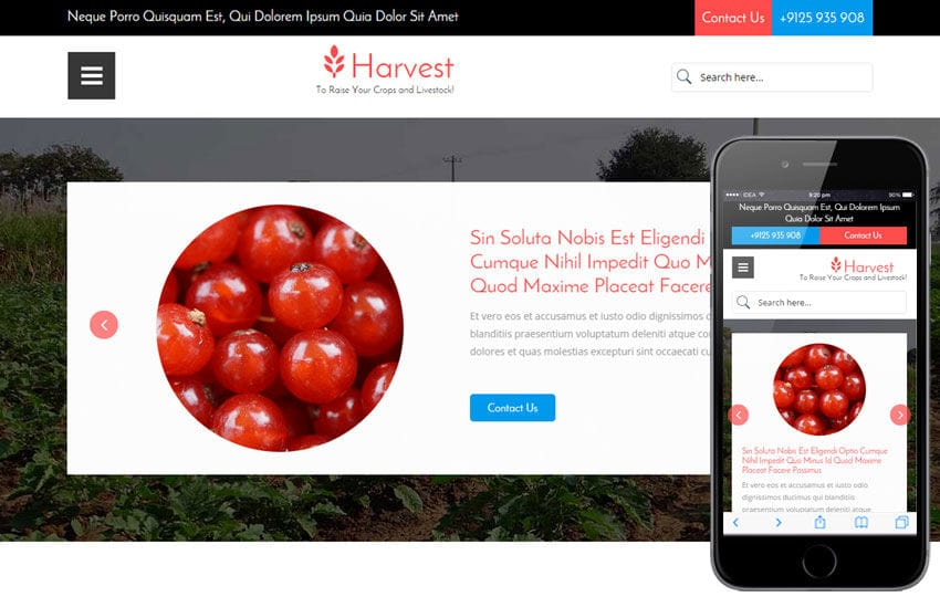 Harvest a Agriculture Category Flat Bootstrap Responsive Web Template Mobile website template Free