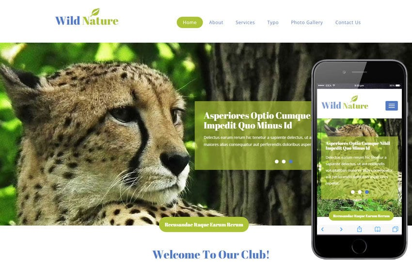 Wild Nature a Animal Category Flat Bootstrap Responsive Web Template Mobile website template Free