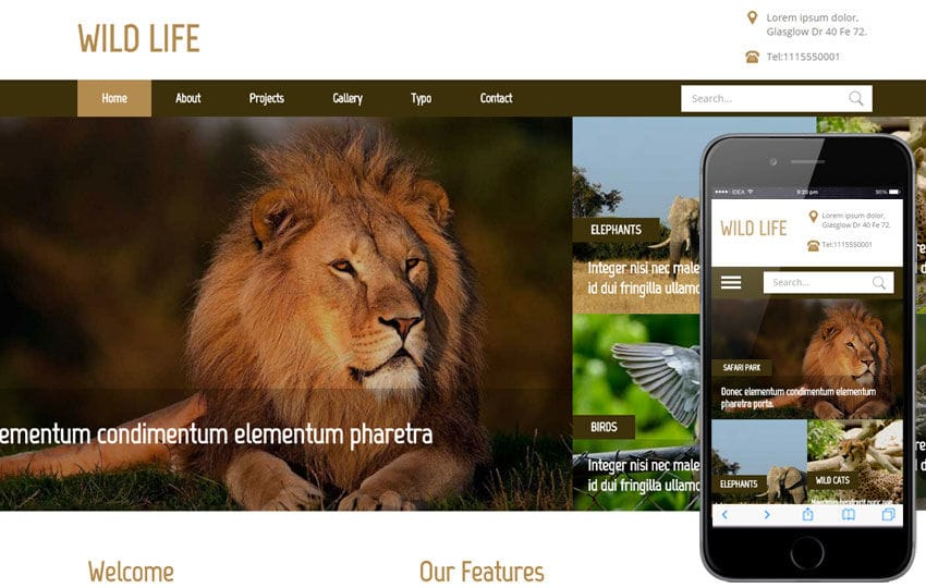 Wild Life a Animal Category Flat Bootstrap Responsive Web Template Mobile website template Free
