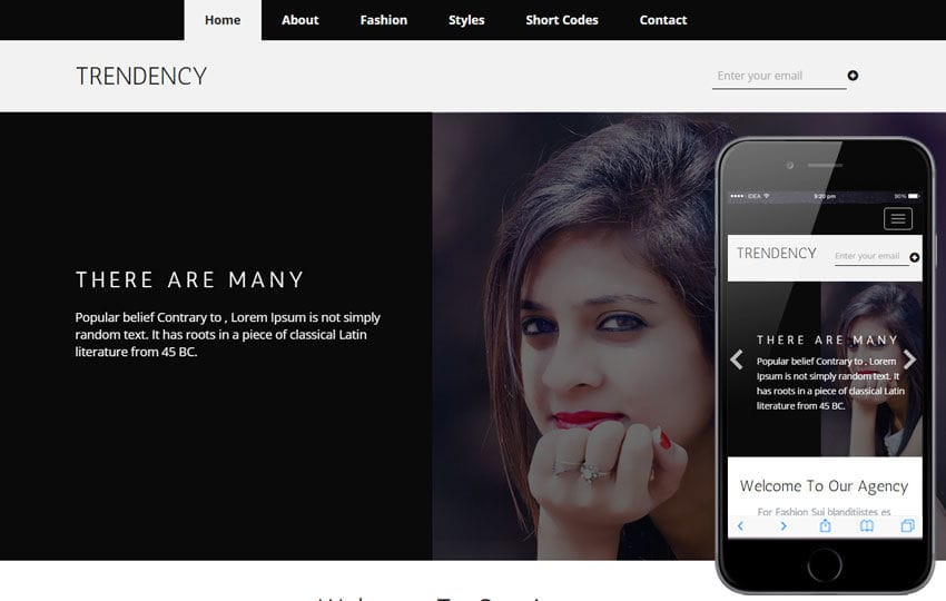 Trendency a Fashion Category Flat Bootstrap Responsive Web Template Mobile website template Free