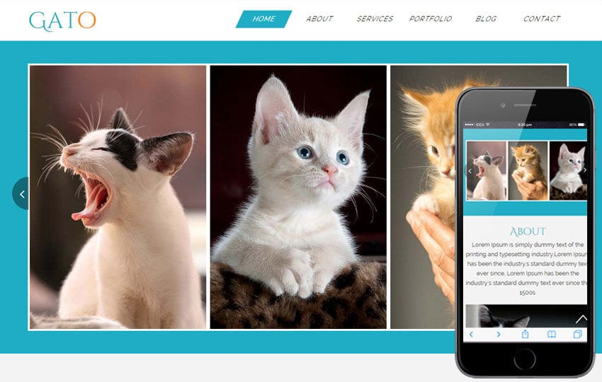 Gato a Animal Category Flat Bootstrap Responsive Web Template Mobile website template Free