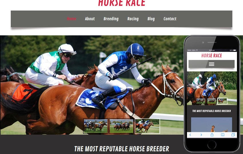 Horse Race a Animal Category Flat Bootstrap Responsive Web Template Mobile website template Free