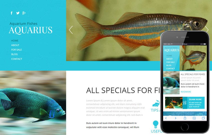 Aquarius a Animal Category Flat Bootstrap Responsive web template Mobile website template Free