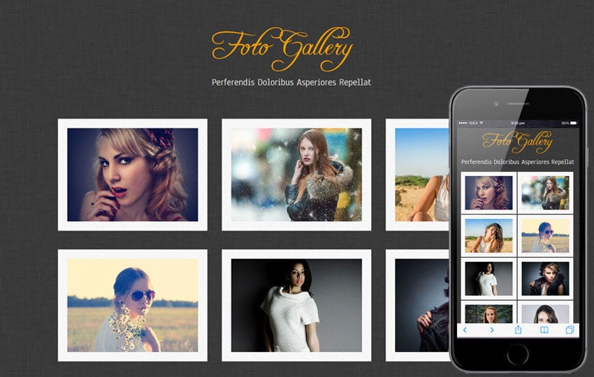 Custom nextgen gallery templates for wordpress connective web design.