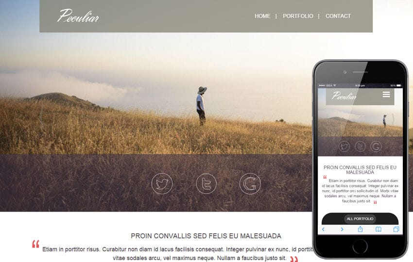 Peculiar a Personal Portfolios Flat Bootstrap Responsive Web Template Mobile website template Free