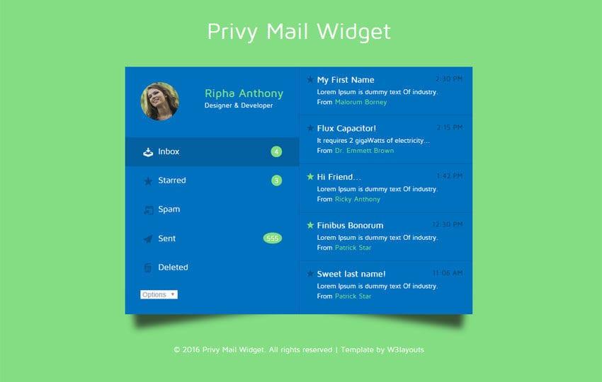 Privy Mail Widget Responsive Widget Template Mobile website template Free