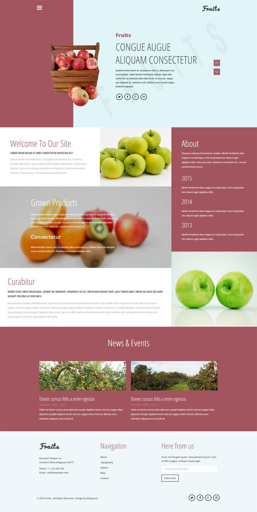 fruits_full