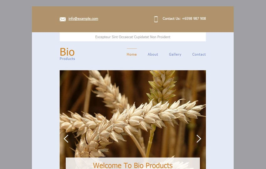 Bio Products a Email Responsive Web Template Mobile website template Free