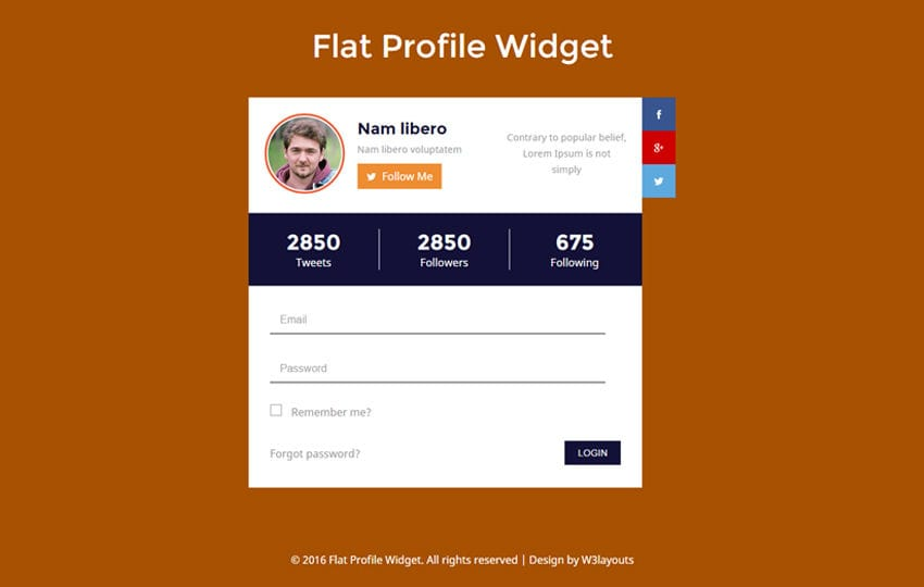 Elegant W3layouts  Profile Templates