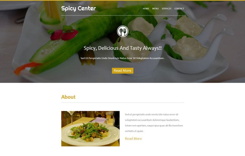 Spicy Center a News Letter Template Mobile website template Free