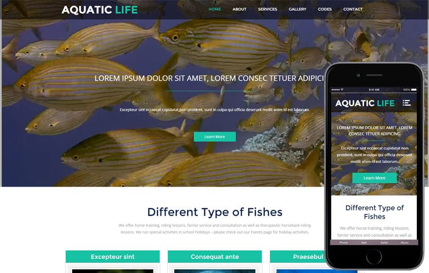 Aquatic Life a Animal Category Flat Bootstrap Responsive web Template Mobile website template Free