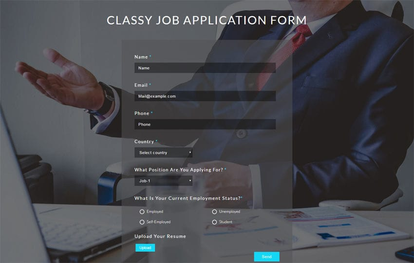 Classy Job Application Form Flat Responsive Widget Template