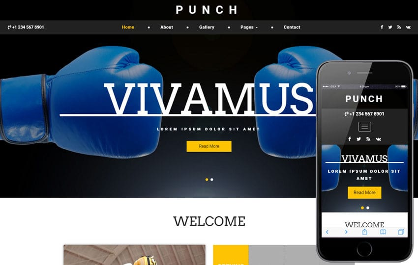 Punch a Sports Category Bootstrap Responsive Web Template Mobile website template Free