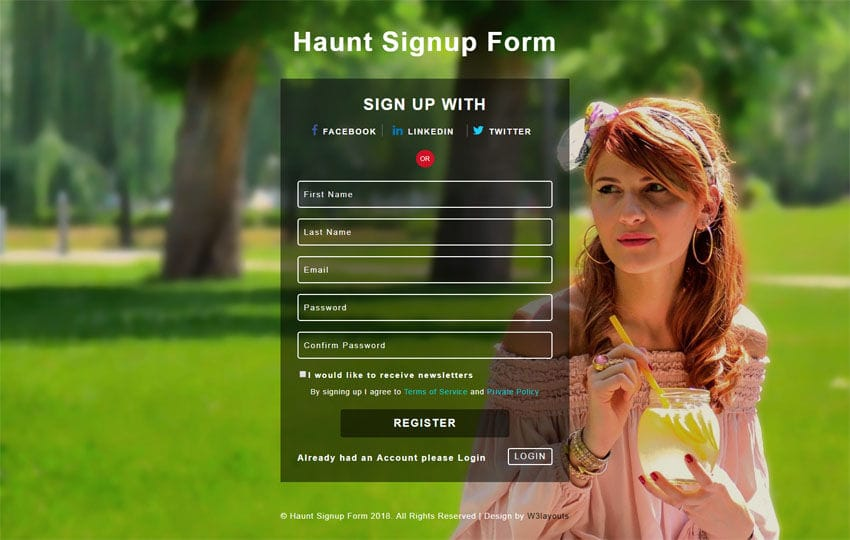Haunt Signup Form Responsive Widget Template Mobile website template Free