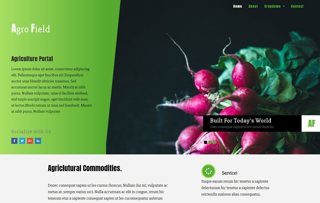 Agro Field Agriculture Category Bootstrap Responsive Web Template. Mobile website template Free