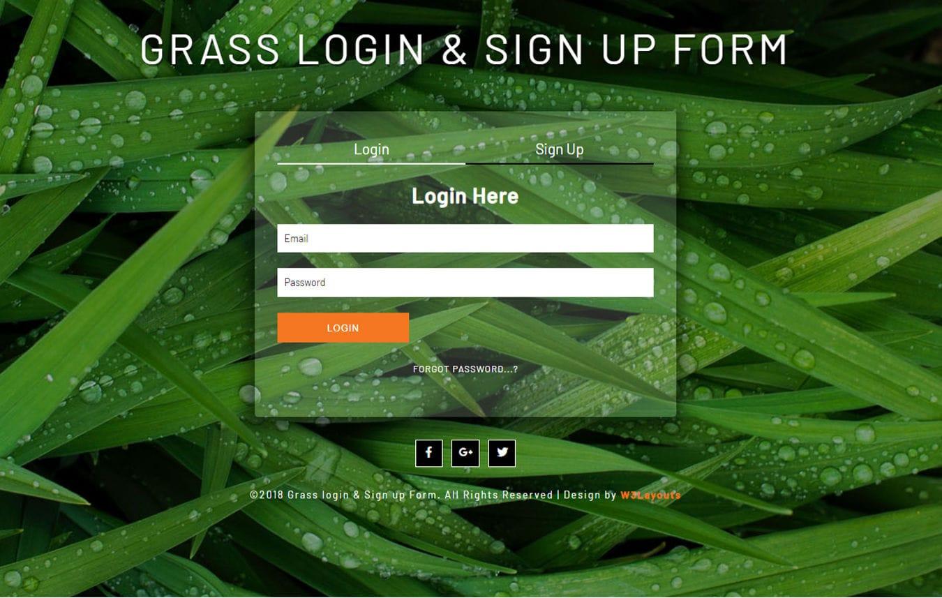 Grass Login & Sign Up Form a Flat Responsive Widget Template Mobile website template Free