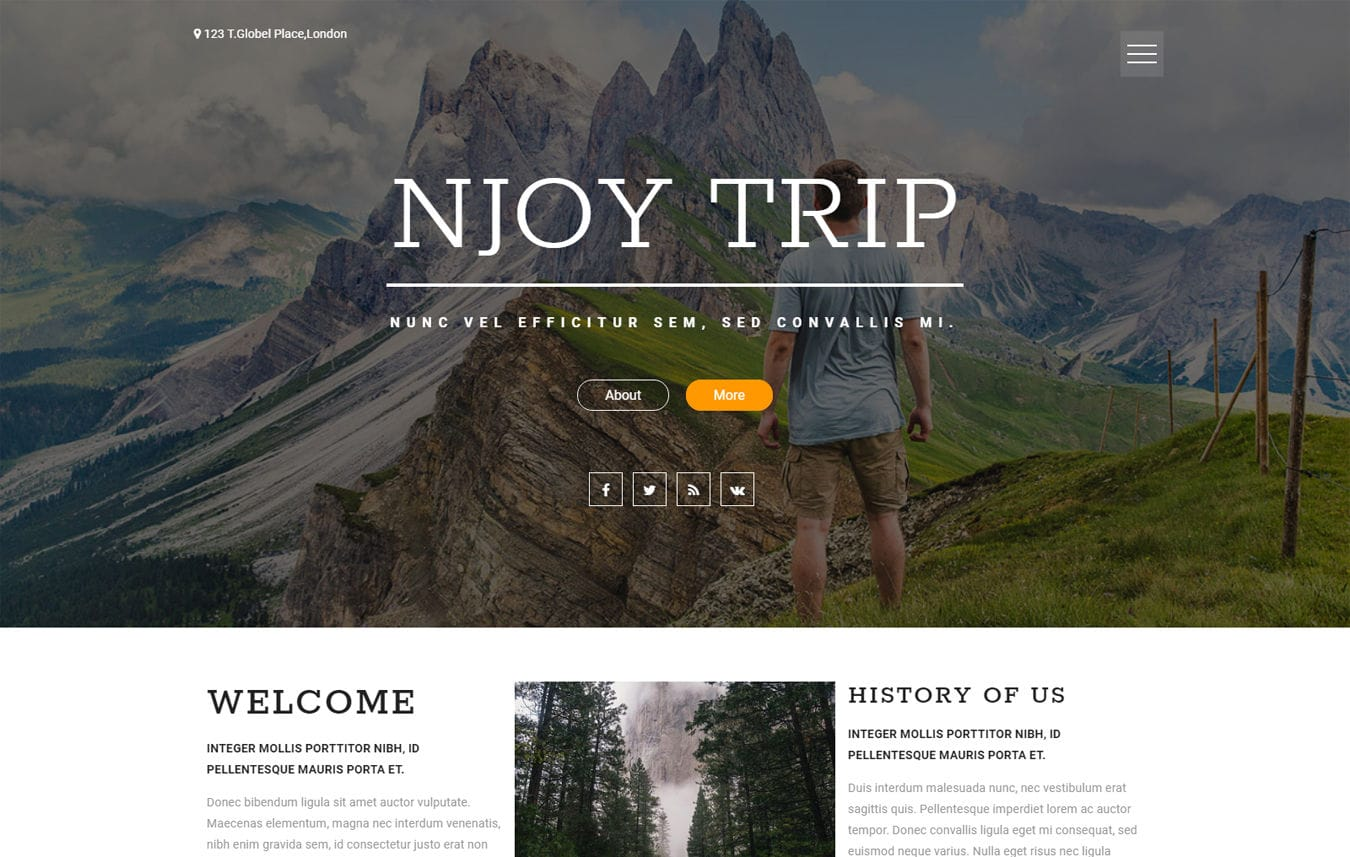 Njoy Trip a Travel Category Flat Bootstrap Responsive Web Template Mobile website template Free