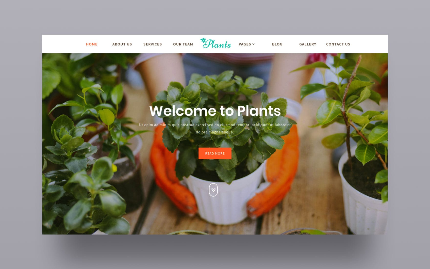 Plants Website Template Agriculture