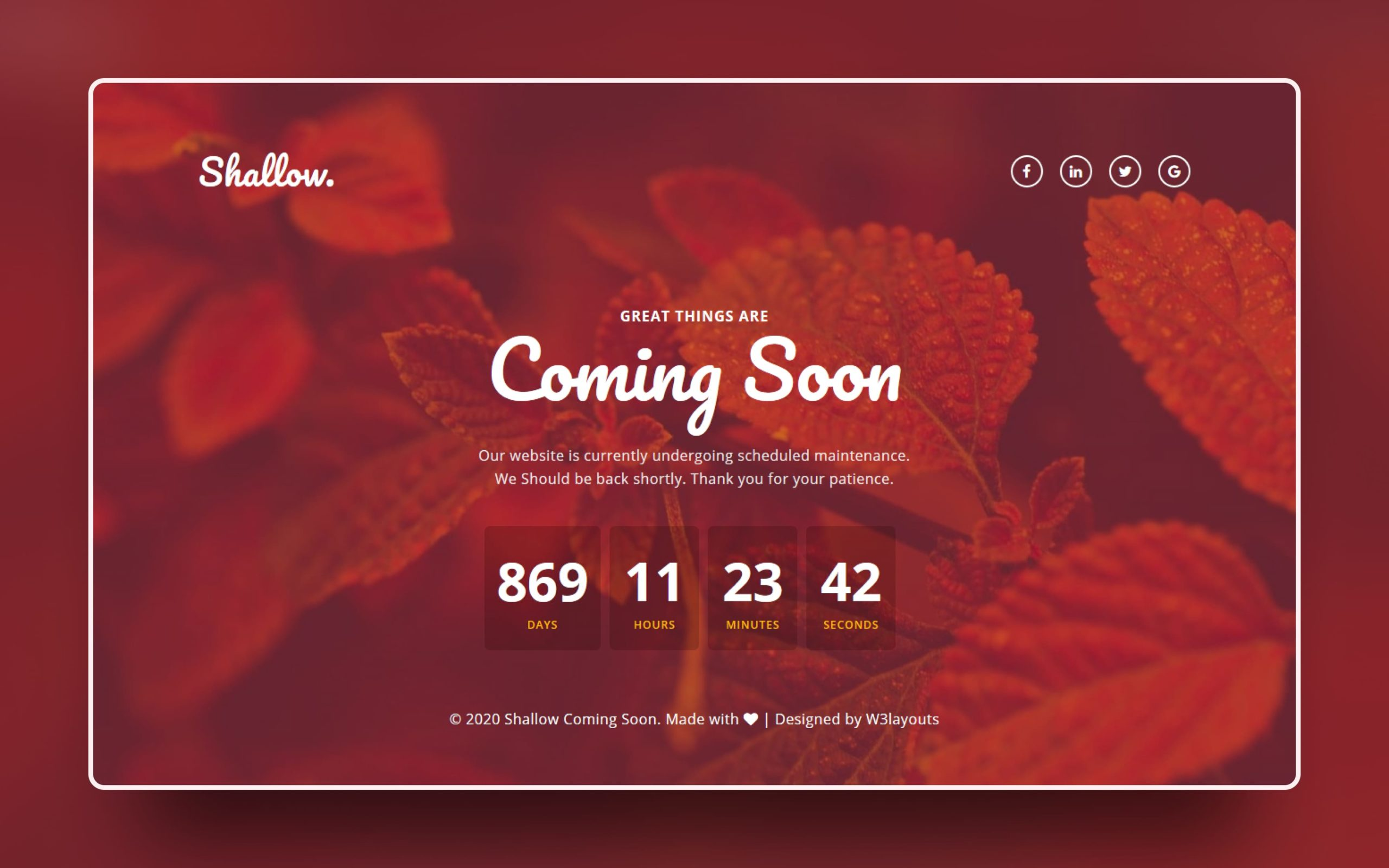 Shallow Coming Soon Web Element W3layouts